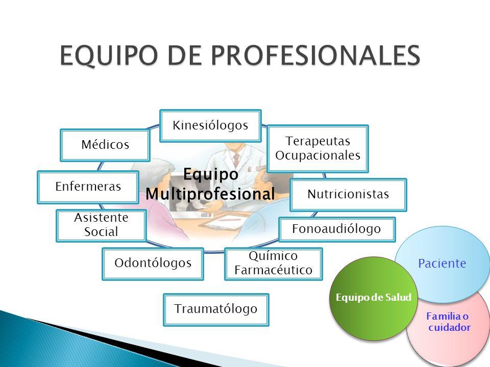 EQUIPO DE PROFESIONALES