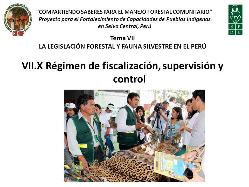 VII.X Régimen de fiscalización, supervisión y control