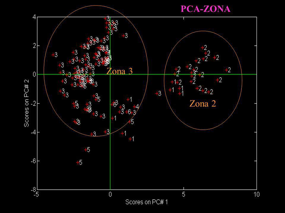 PCA-ZONA Zona 2 Zona 3