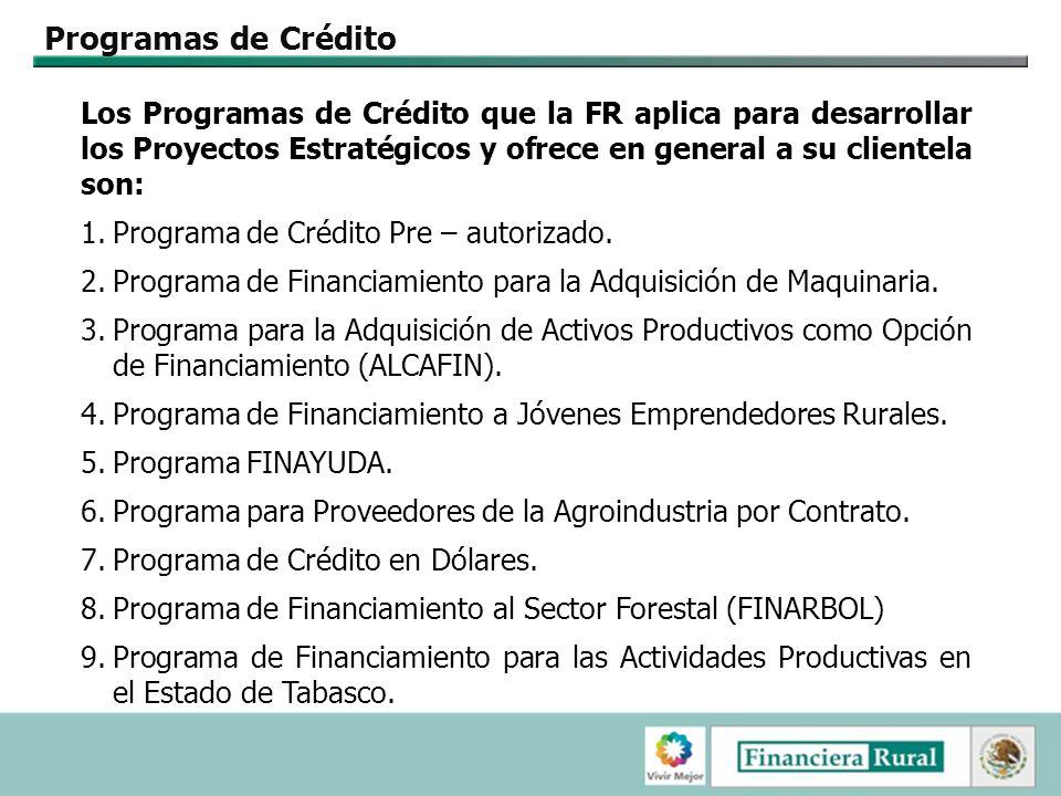 Programas de Crédito Los Programas de Crédito que la FR aplica para desarrollar los Proyectos Estratégicos y ofrece en general a su clientela son: