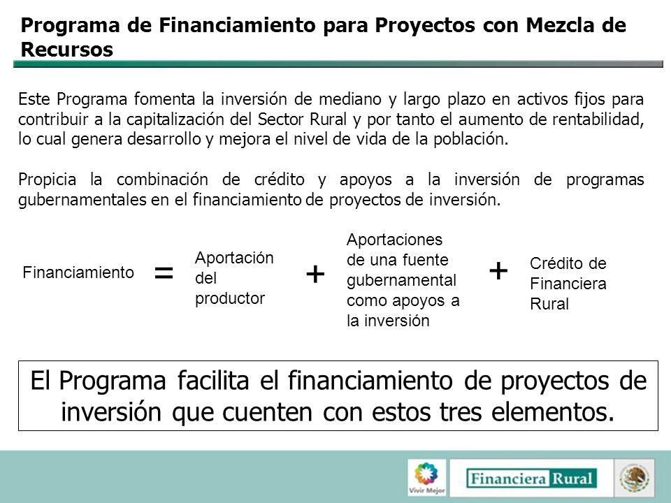Programa de Financiamiento para Proyectos con Mezcla de Recursos