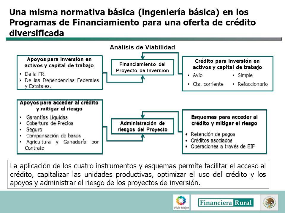 Una misma normativa básica (ingeniería básica) en los Programas de Financiamiento para una oferta de crédito diversificada