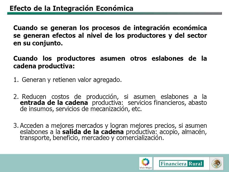 Efecto de la Integración Económica