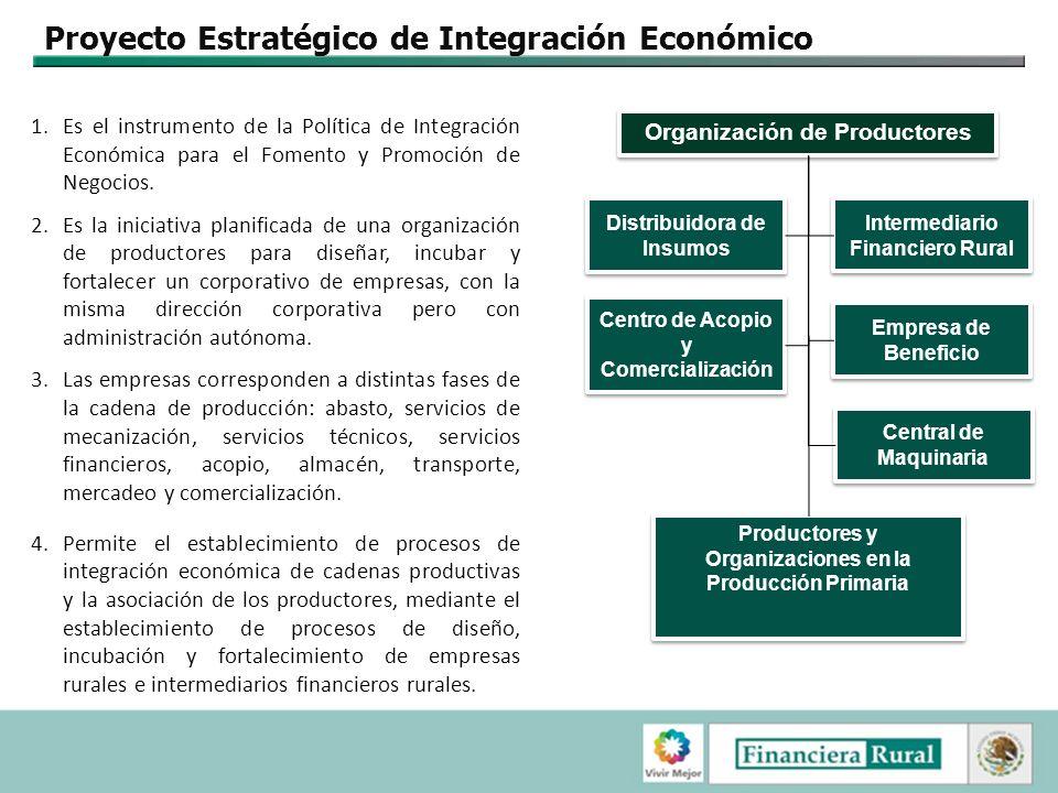 Proyecto Estratégico de Integración Económico