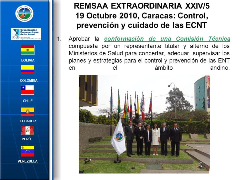 REMSAA EXTRAORDINARIA XXIV/5 19 Octubre 2010, Caracas: Control, prevención y cuidado de las ECNT
