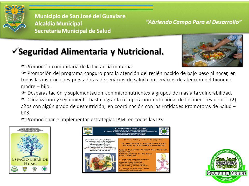 Seguridad Alimentaria y Nutricional.