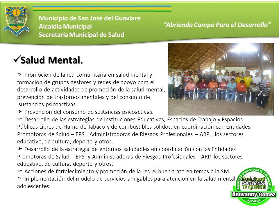 Salud Mental. Promoción de la red comunitaria en salud mental y