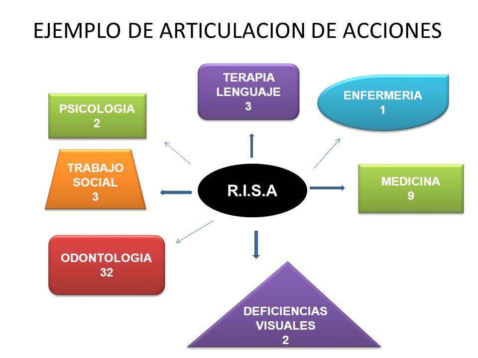EJEMPLO DE ARTICULACION DE ACCIONES