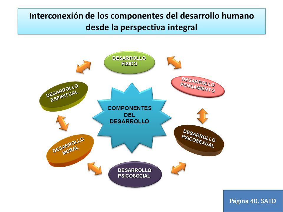 Interconexión de los componentes del desarrollo humano desde la perspectiva integral