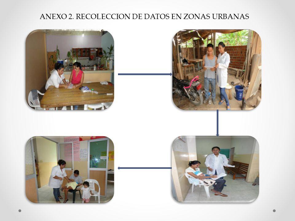 ANEXO 2. RECOLECCION DE DATOS EN ZONAS URBANAS