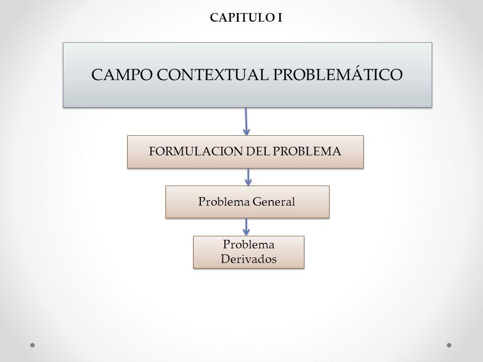 CAMPO CONTEXTUAL PROBLEMÁTICO