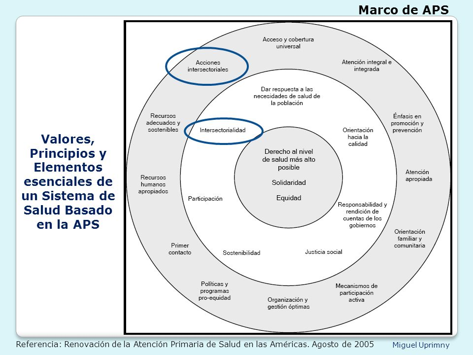 Marco de APS Valores, Principios y Elementos esenciales de un Sistema de Salud Basado en la APS.