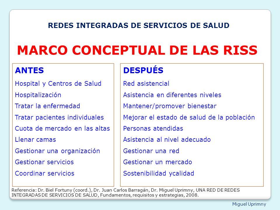 MARCO CONCEPTUAL DE LAS RISS