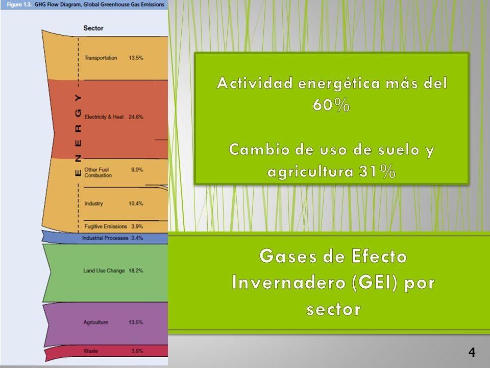 Gases de Efecto Invernadero (GEI) por sector