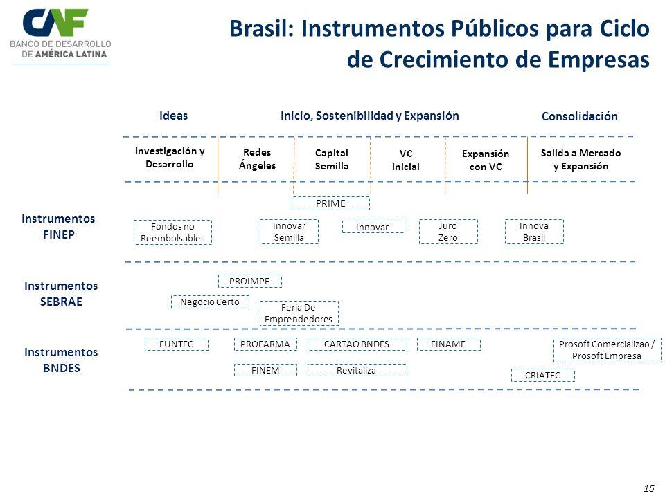 Brasil: Instrumentos Públicos para Ciclo de Crecimiento de Empresas