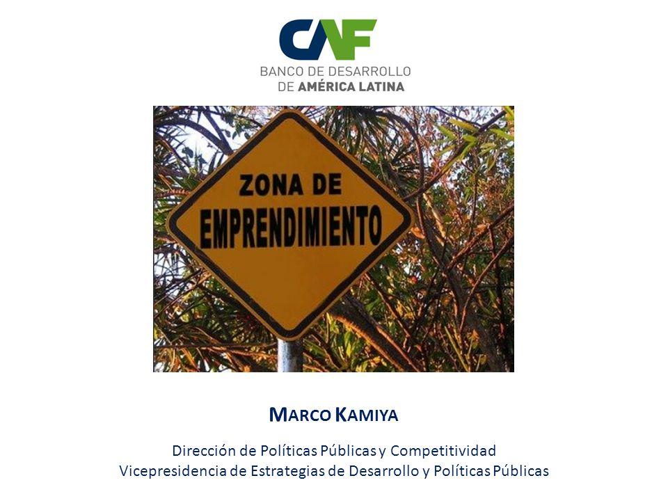Marco Kamiya Dirección de Políticas Públicas y Competitividad