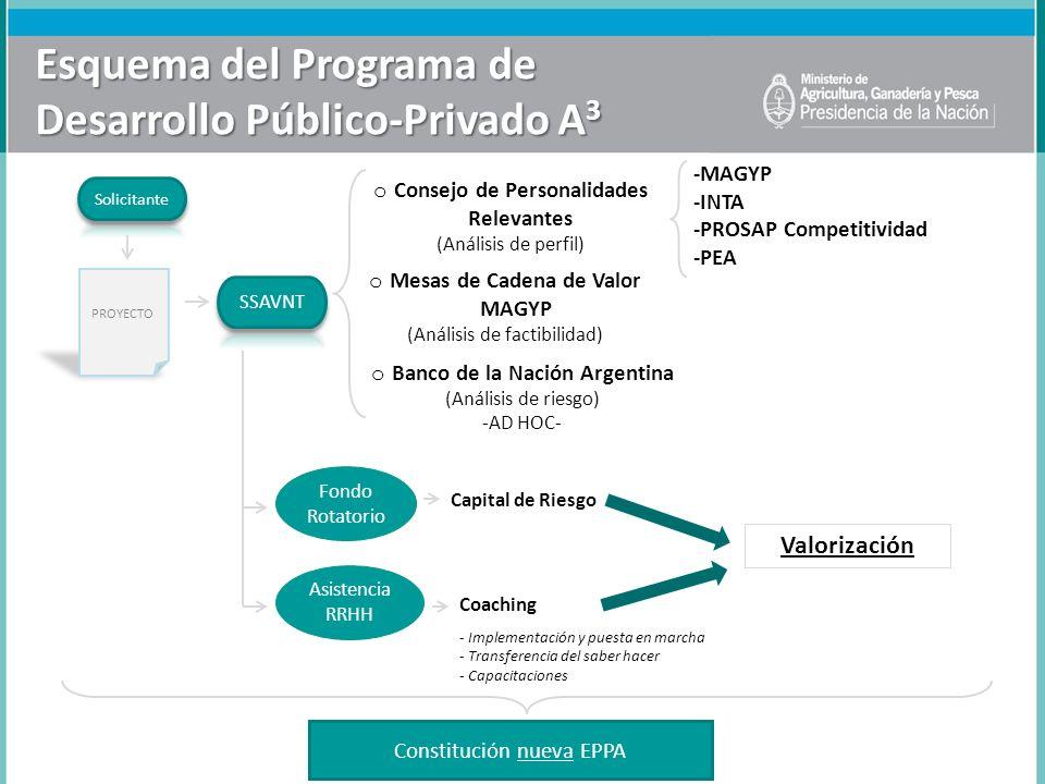 Esquema del Programa de Desarrollo Público-Privado A3