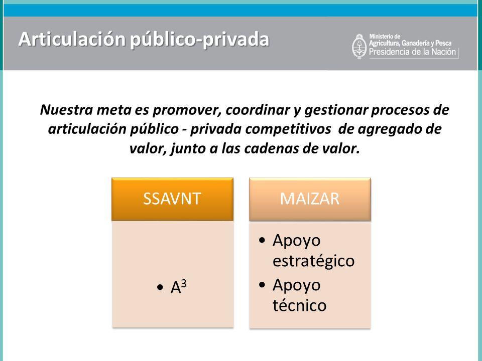 Articulación público-privada