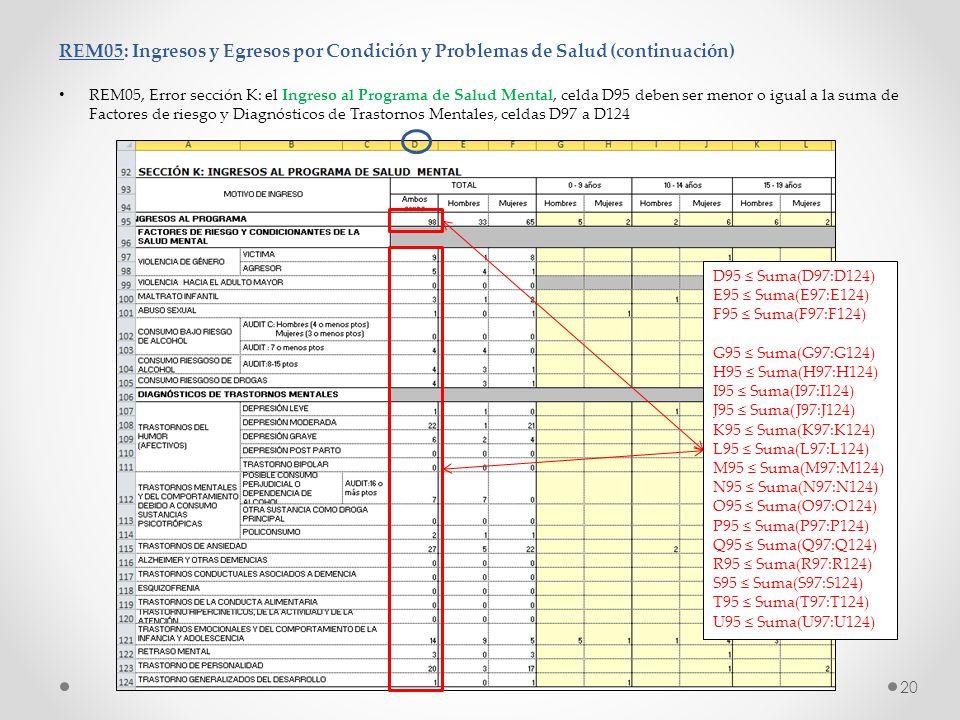 REM05: Ingresos y Egresos por Condición y Problemas de Salud (continuación)