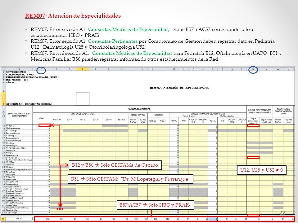 … REM07: Atención de Especialidades