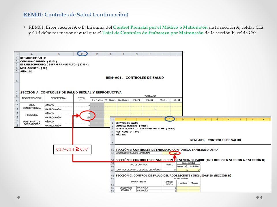 REM01: Controles de Salud (continuación)