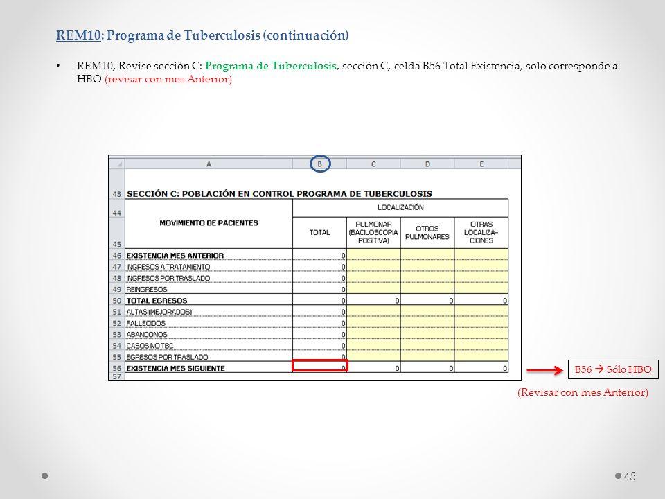 REM10: Programa de Tuberculosis (continuación)