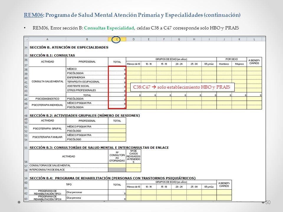 REM06: Programa de Salud Mental Atención Primaria y Especialidades (continuación)