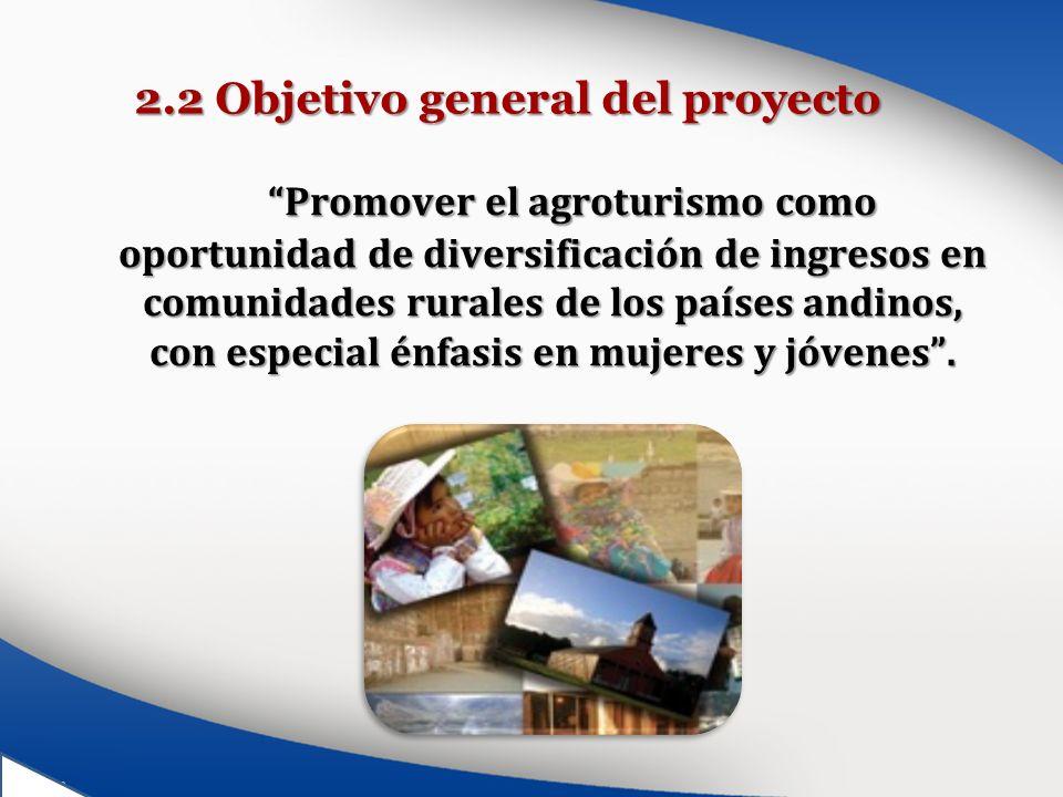 2.2 Objetivo general del proyecto