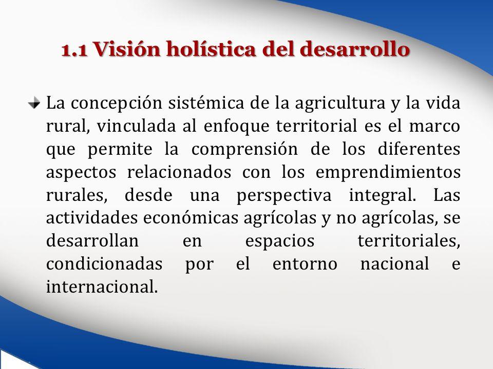 1.1 Visión holística del desarrollo
