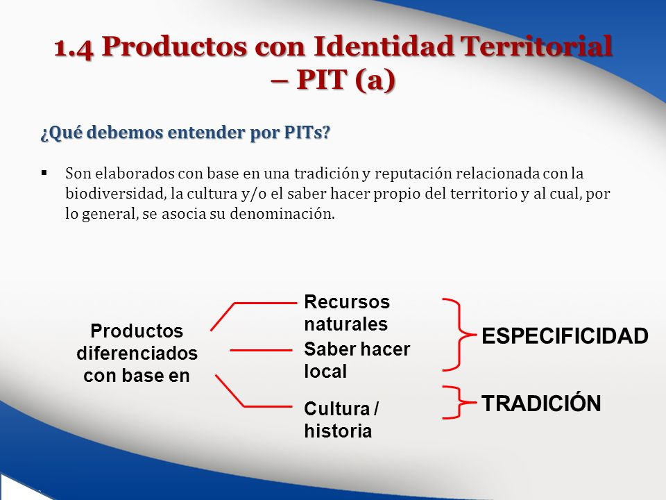 1.4 Productos con Identidad Territorial – PIT (a)
