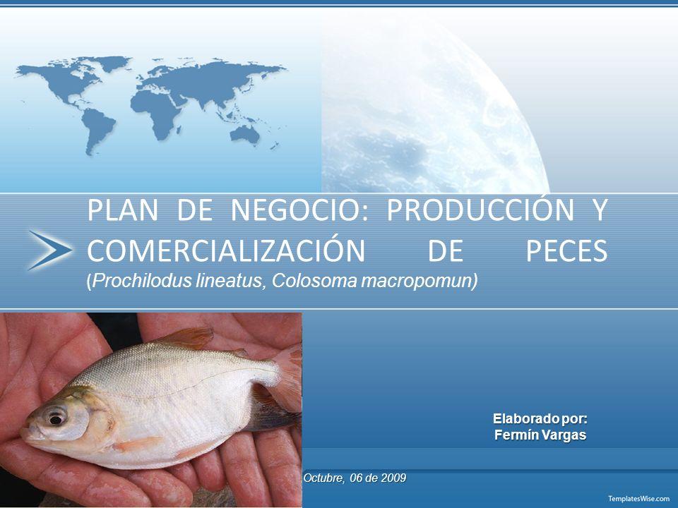 PLAN DE NEGOCIO: PRODUCCIÓN Y COMERCIALIZACIÓN DE PECES (Prochilodus lineatus, Colosoma macropomun)