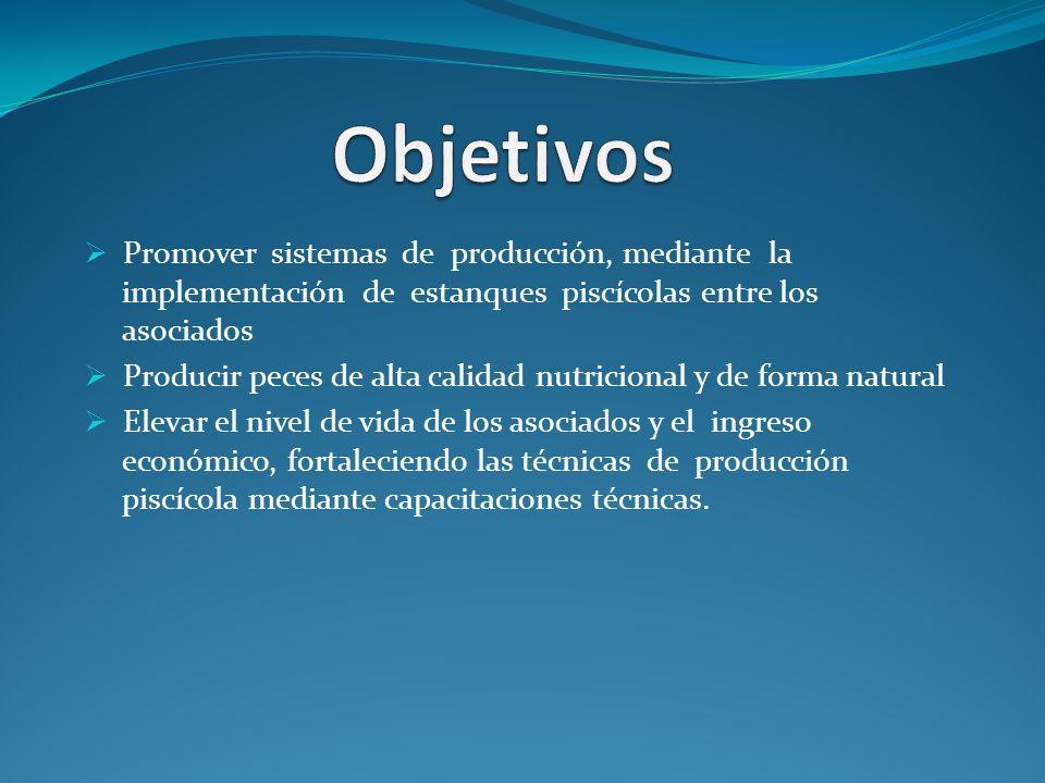 Plan de negocio producci n y comercializaci n de peces for Produccion de peces en estanques