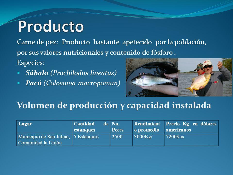 Producto Volumen de producción y capacidad instalada
