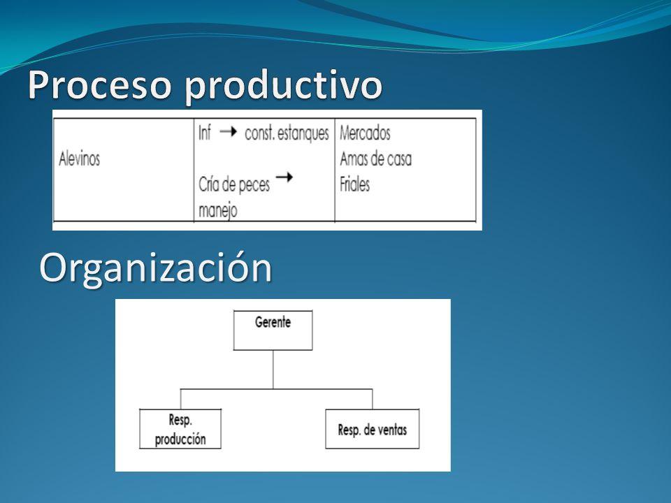 Proceso productivo Organización