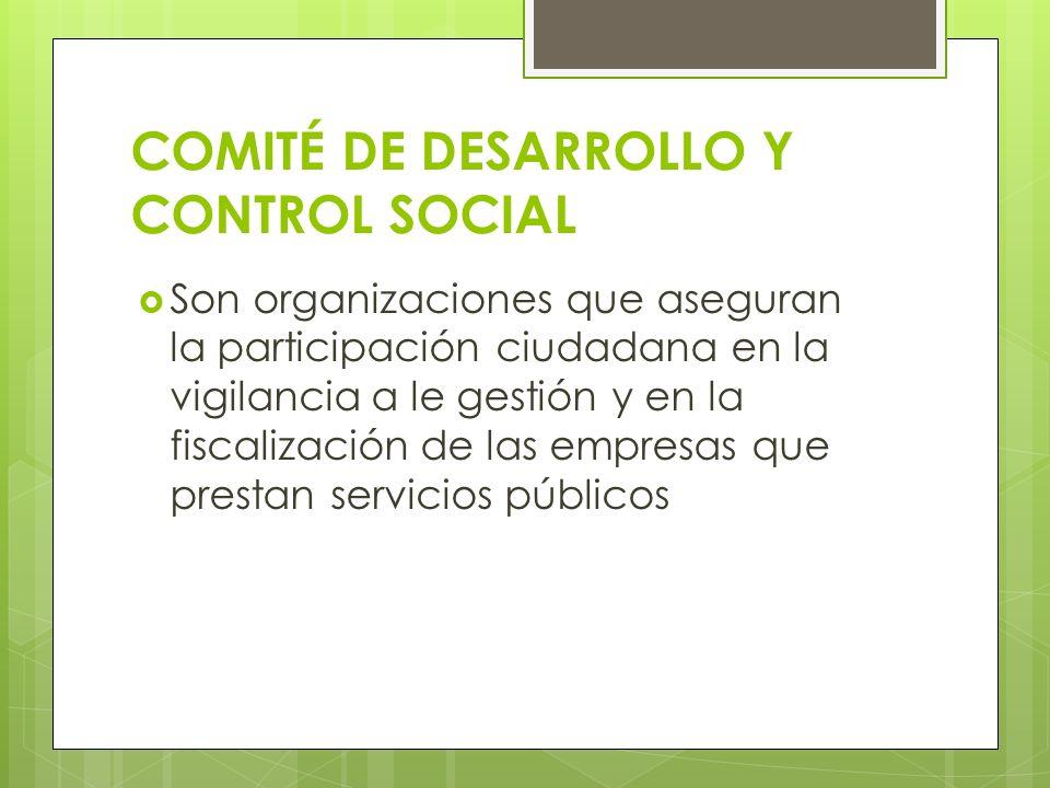 COMITÉ DE DESARROLLO Y CONTROL SOCIAL