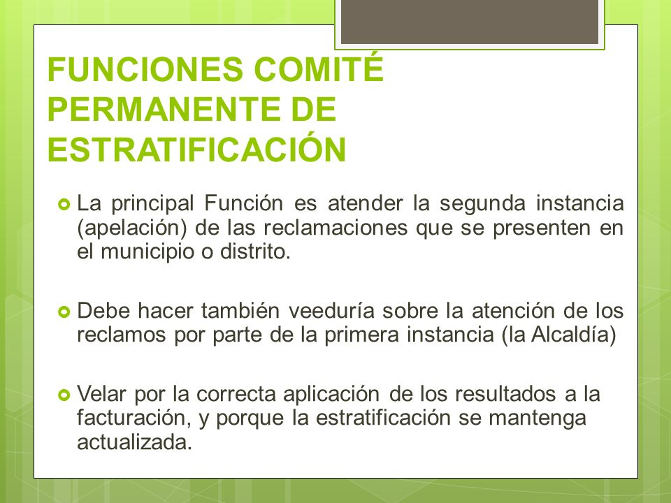 FUNCIONES COMITÉ PERMANENTE DE ESTRATIFICACIÓN