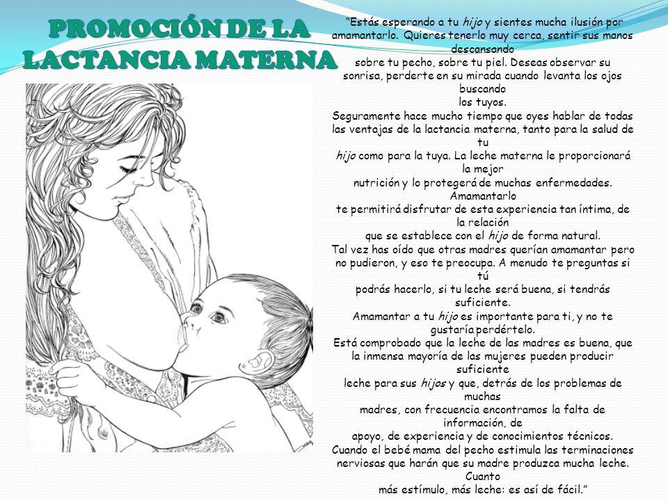 PROMOCIÓN DE LA LACTANCIA MATERNA