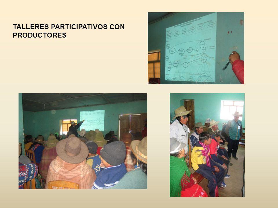 TALLERES PARTICIPATIVOS CON PRODUCTORES