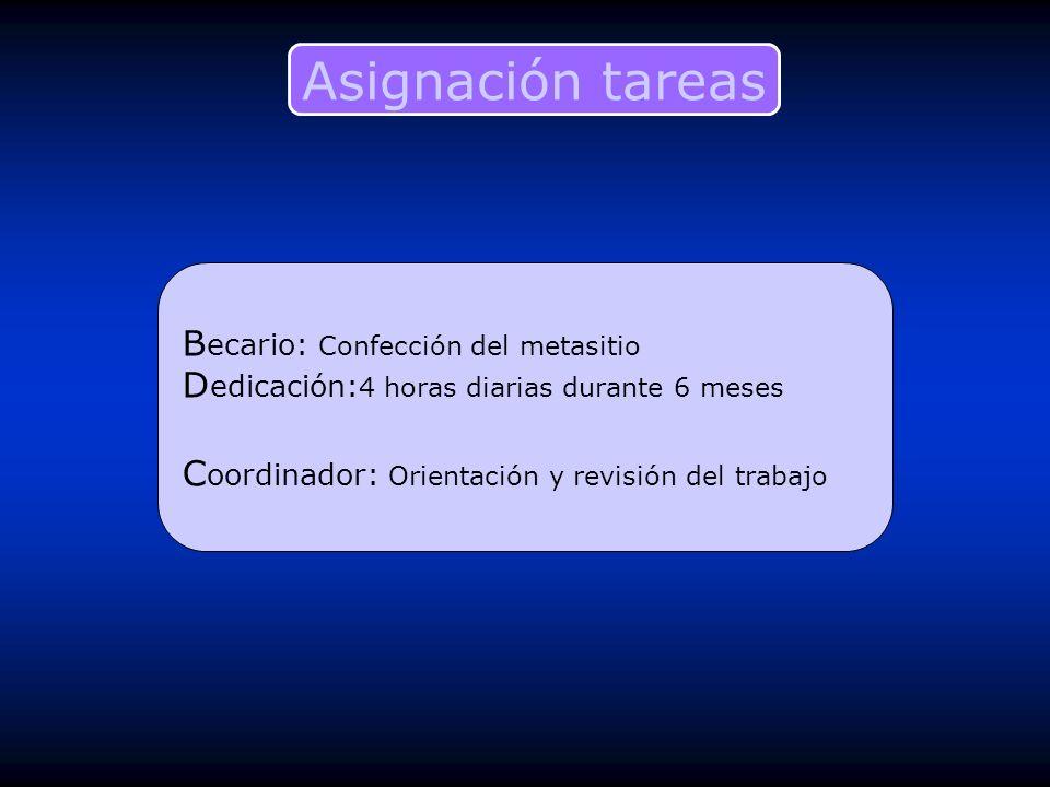 Asignación tareas Becario: Confección del metasitio Dedicación:4 horas diarias durante 6 meses.