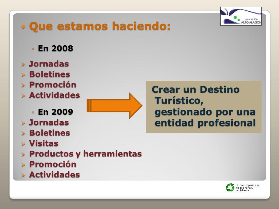 Que estamos haciendo: En 2008. Jornadas. Boletines. Promoción. Actividades. En 2009. Visitas.