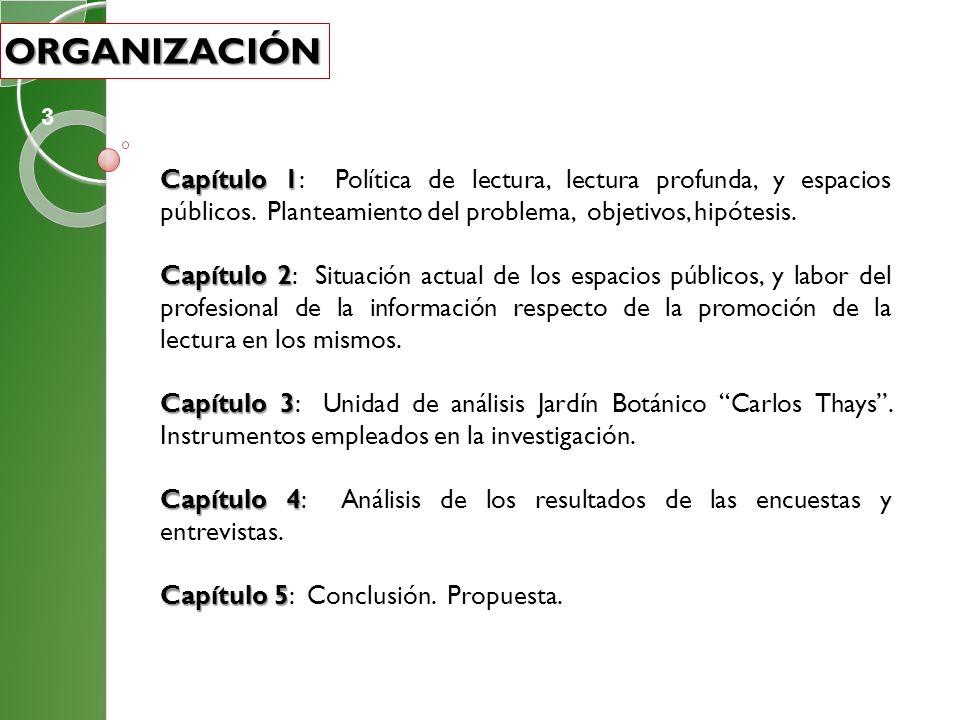 ORGANIZACIÓN 3. Capítulo 1: Política de lectura, lectura profunda, y espacios públicos. Planteamiento del problema, objetivos, hipótesis.