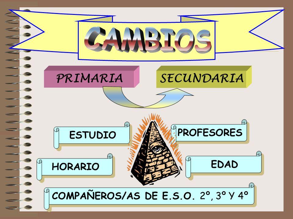 COMPAÑEROS/AS DE E.S.O. 2º, 3º Y 4º