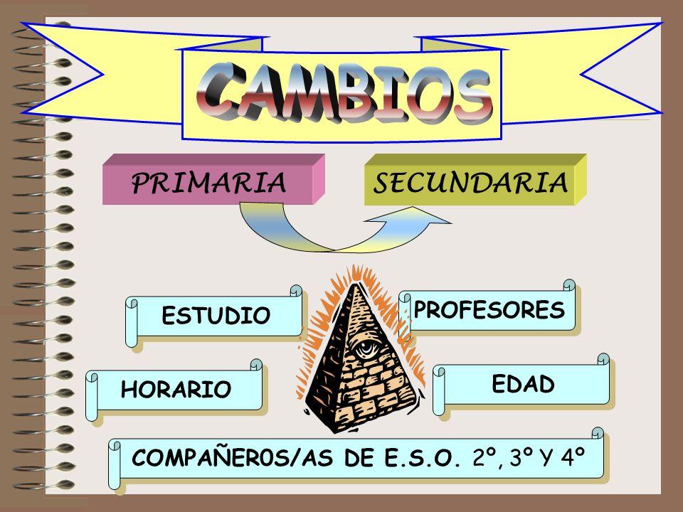 COMPAÑER0S/AS DE E.S.O. 2º, 3º Y 4º