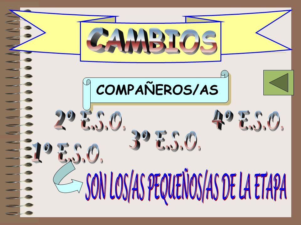 SON LOS/AS PEQUEÑOS/AS DE LA ETAPA