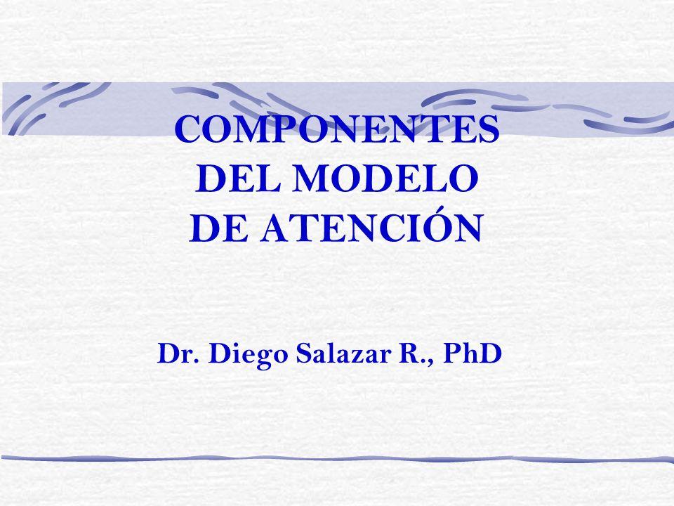COMPONENTES DEL MODELO DE ATENCIÓN