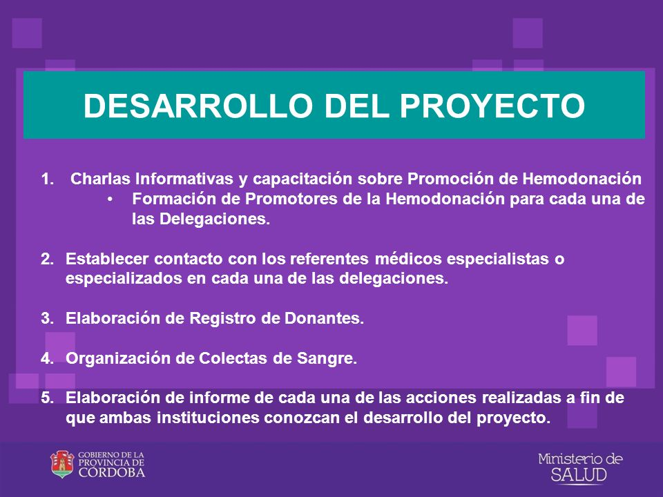 DESARROLLO DEL PROYECTO