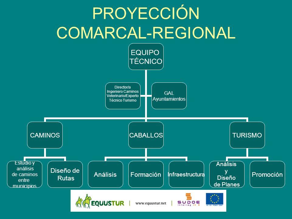 PROYECCIÓN COMARCAL-REGIONAL