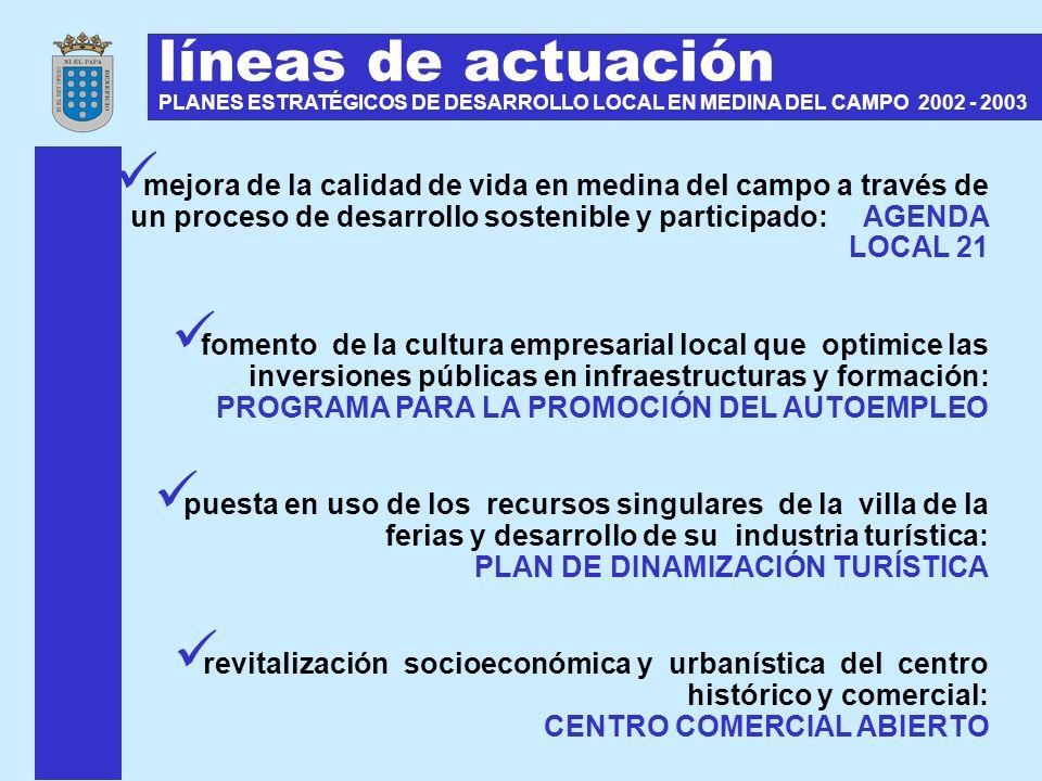 líneas de actuación PLANES ESTRATÉGICOS DE DESARROLLO LOCAL EN MEDINA DEL CAMPO 2002 - 2003.