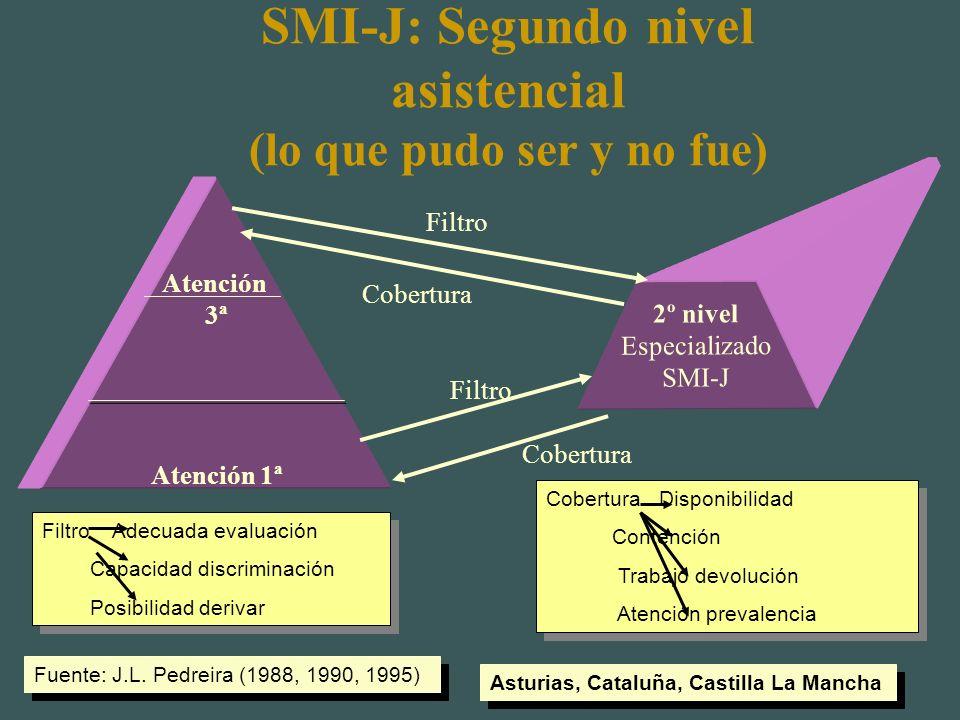 SMI-J: Segundo nivel asistencial (lo que pudo ser y no fue)