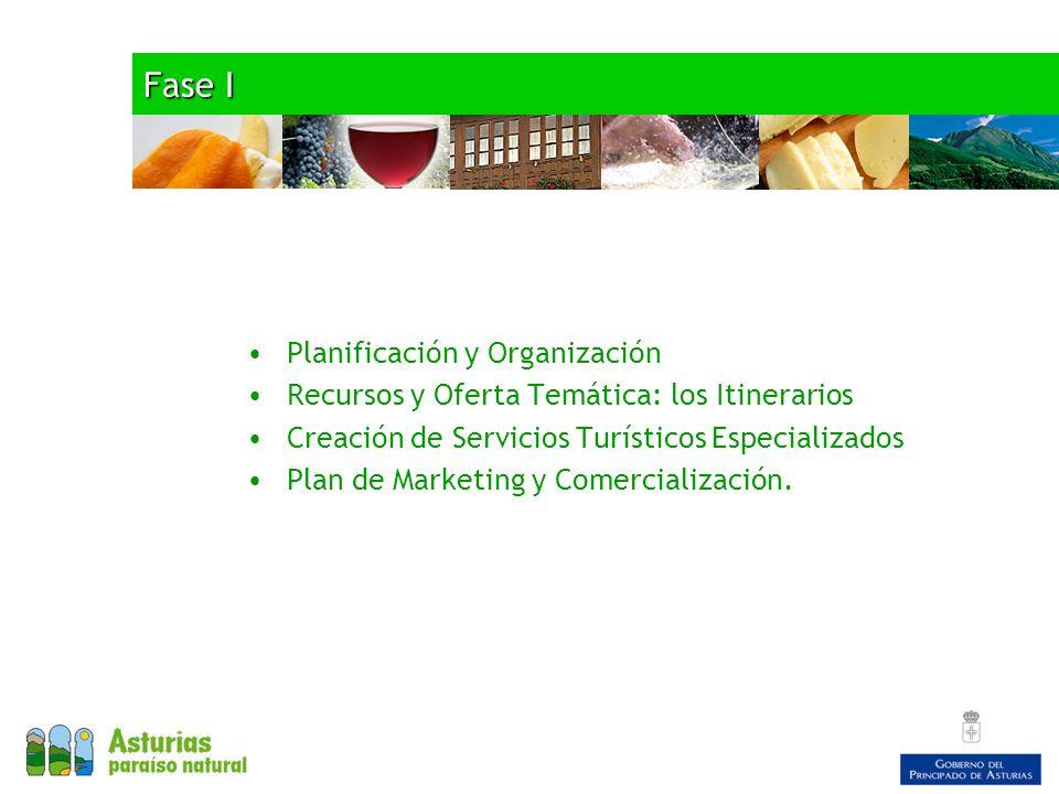 Fase I Planificación y Organización